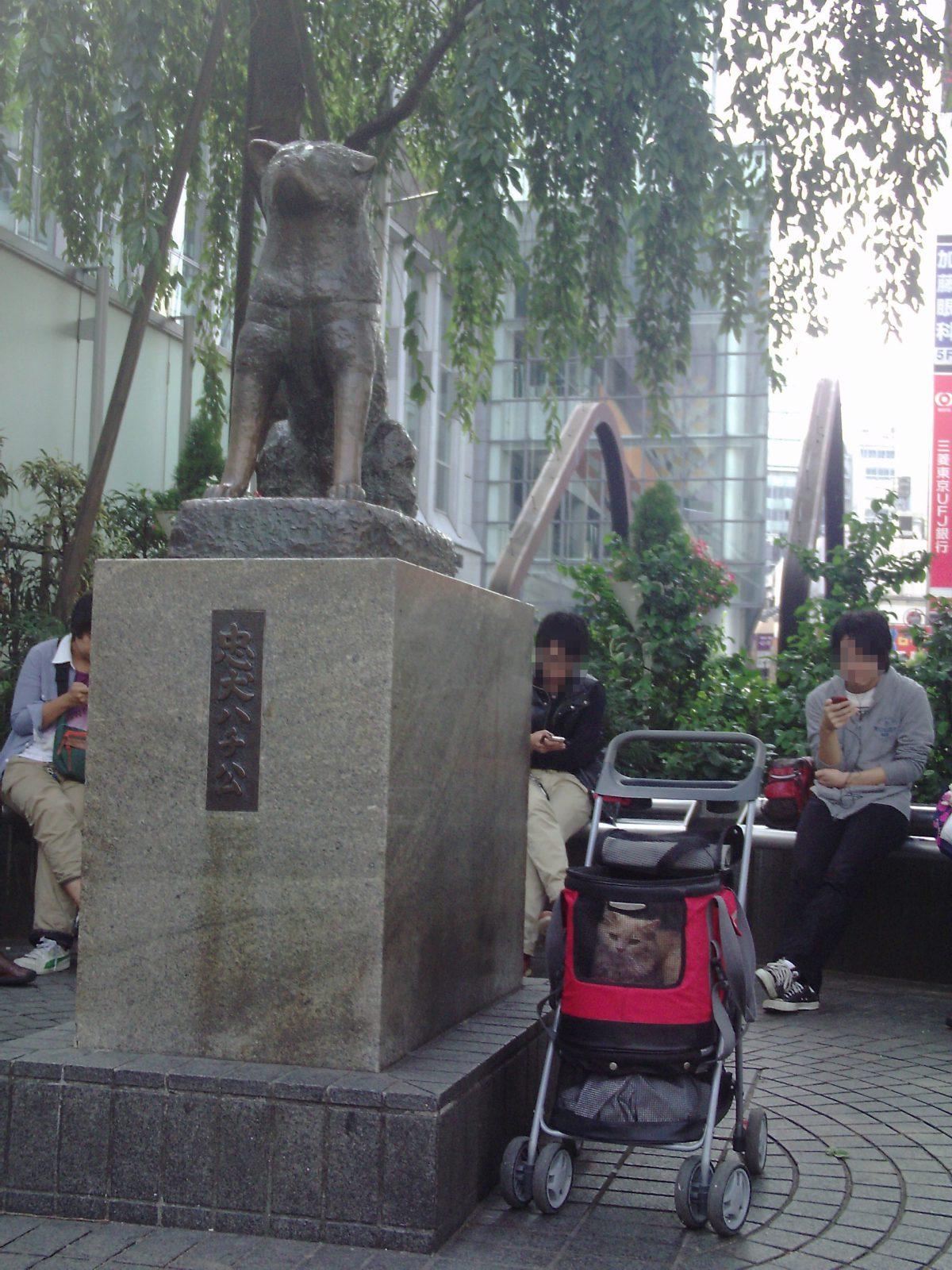 新宿 原宿 渋谷 巣鴨