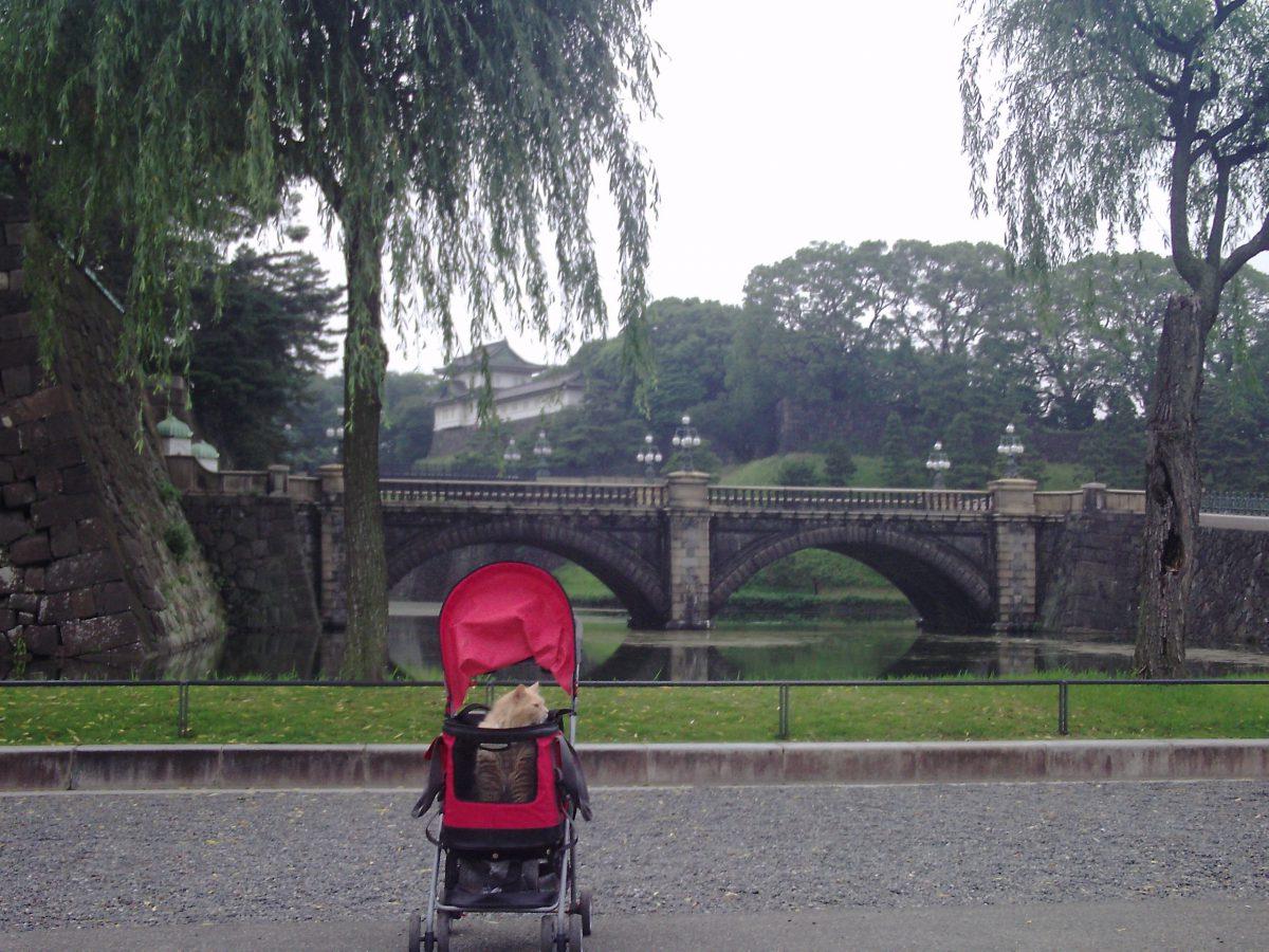 日比谷公園 皇居 東京タワー