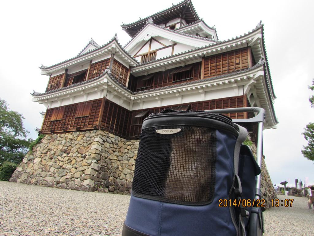 白兎神社 福知山城