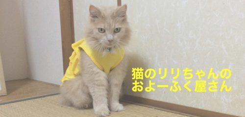 猫のリリちゃんのおよーふく屋さん
